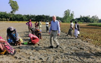Pilot potato growers selected, trained and supplied with improved seed potatoes